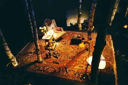 2003 Im Wald 002b