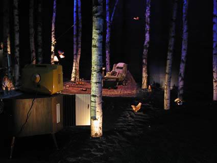 2003 Im Wald 008